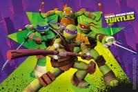 Carrera Go Ninja Turtles